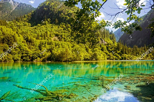 stock-photo-deep-green-blue-mountain-lake-with-green-trees-in-china-1318116836