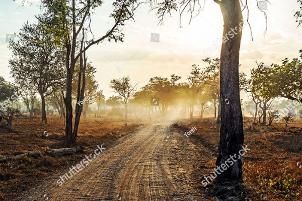 stock-photo-long-road-in-to-the-distance-at-sunset-with-light-beams-and-smoke-in-zambia-africa-712363237