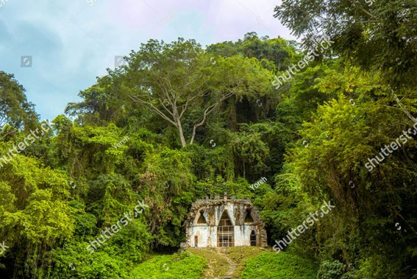 stock-photo-mayan-ruin-with-long-stairs-in-palenque-forest-mexico-1318116839