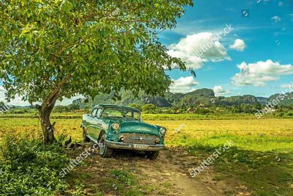 stock-photo-vinales-cuba-november-buick-old-timer-taxi-in-shade-underneath-tree-with-green-hills-and-1059158027